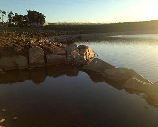 Lagoons Creek rehabilitation project