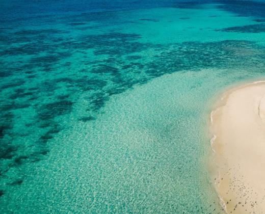 Reef Guardian Action Plan