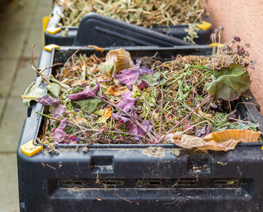 Composting & worm farms
