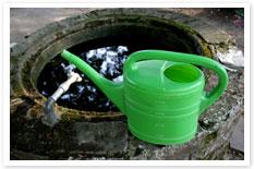 Water efficient gardening