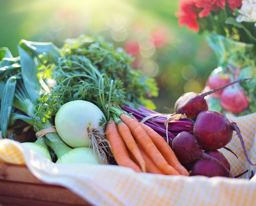 Grow It, Share It, Eat It!