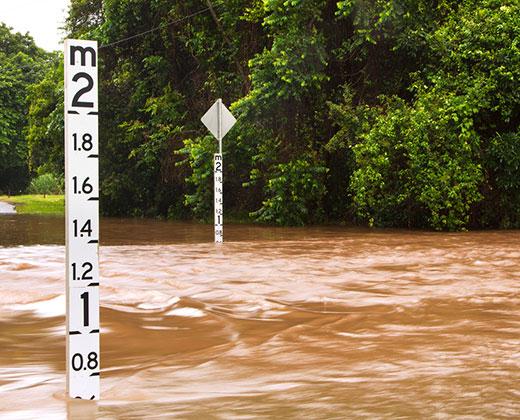 Flood cameras
